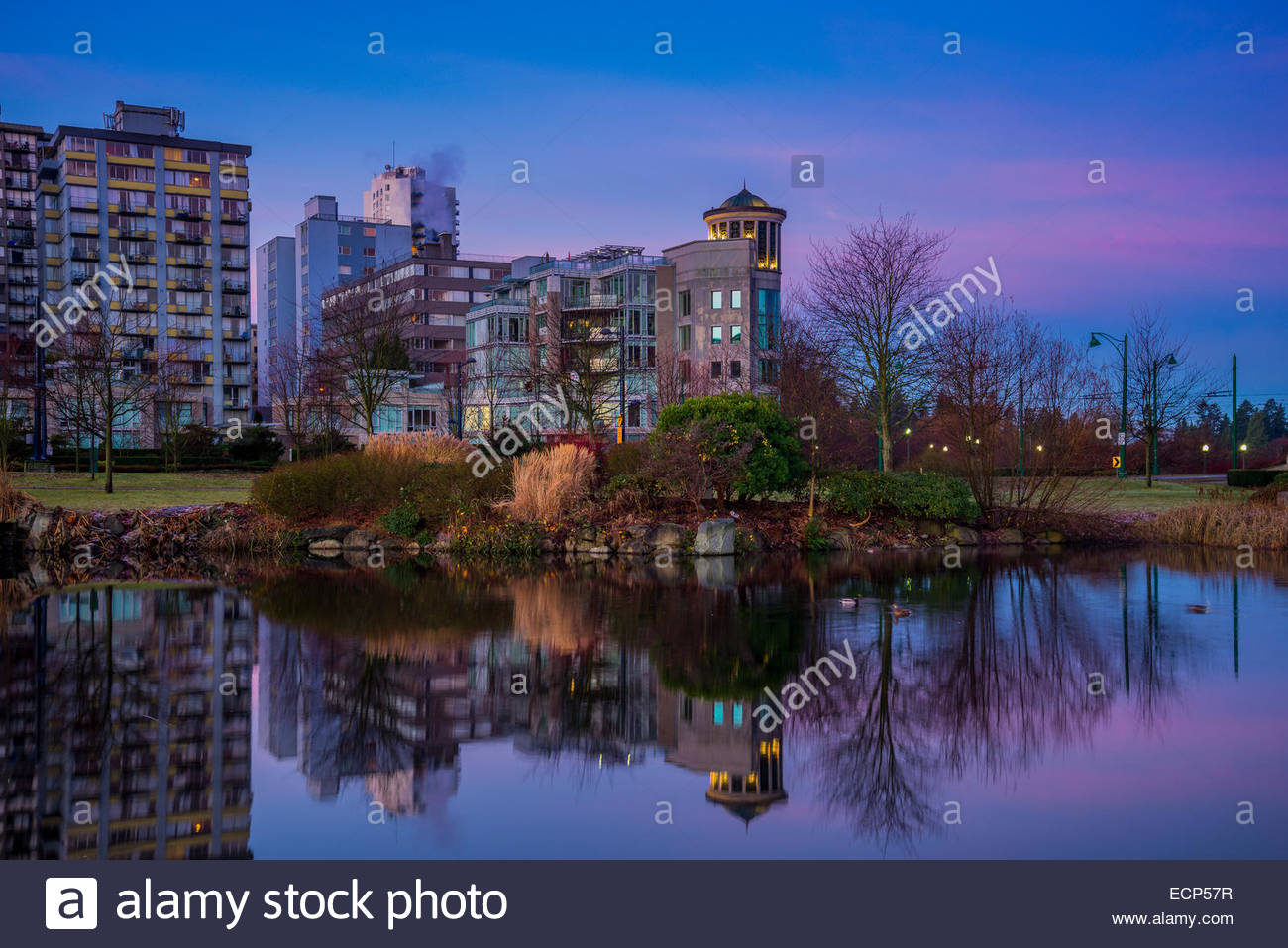 West End Vancouver condos reflected in pond at Devonian Harbour Park, Vancouver, British Columbia, Canada - Stock Image