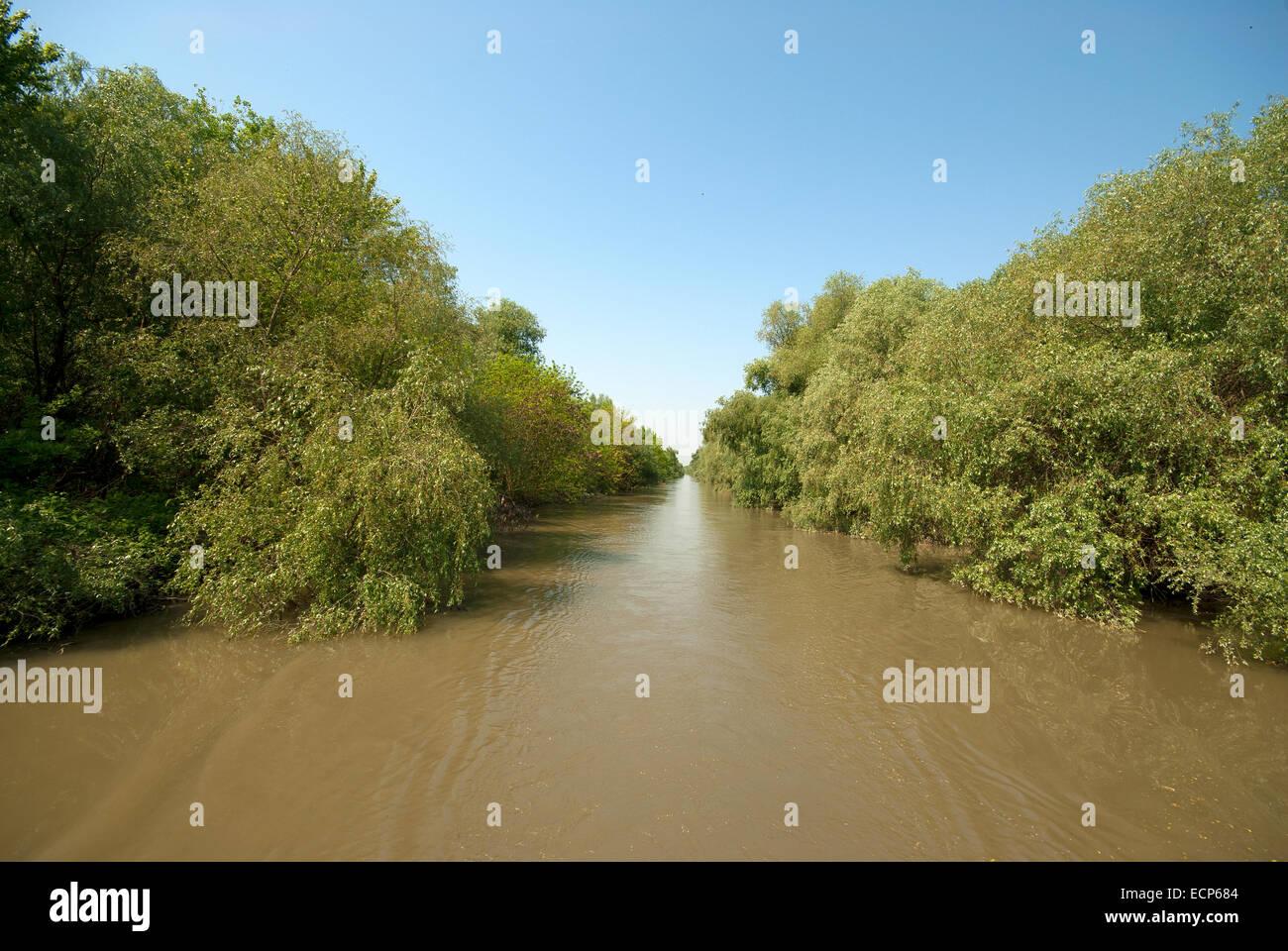 Danube delta, Unesco World Heritage Site, Romania, Europa - Stock Image