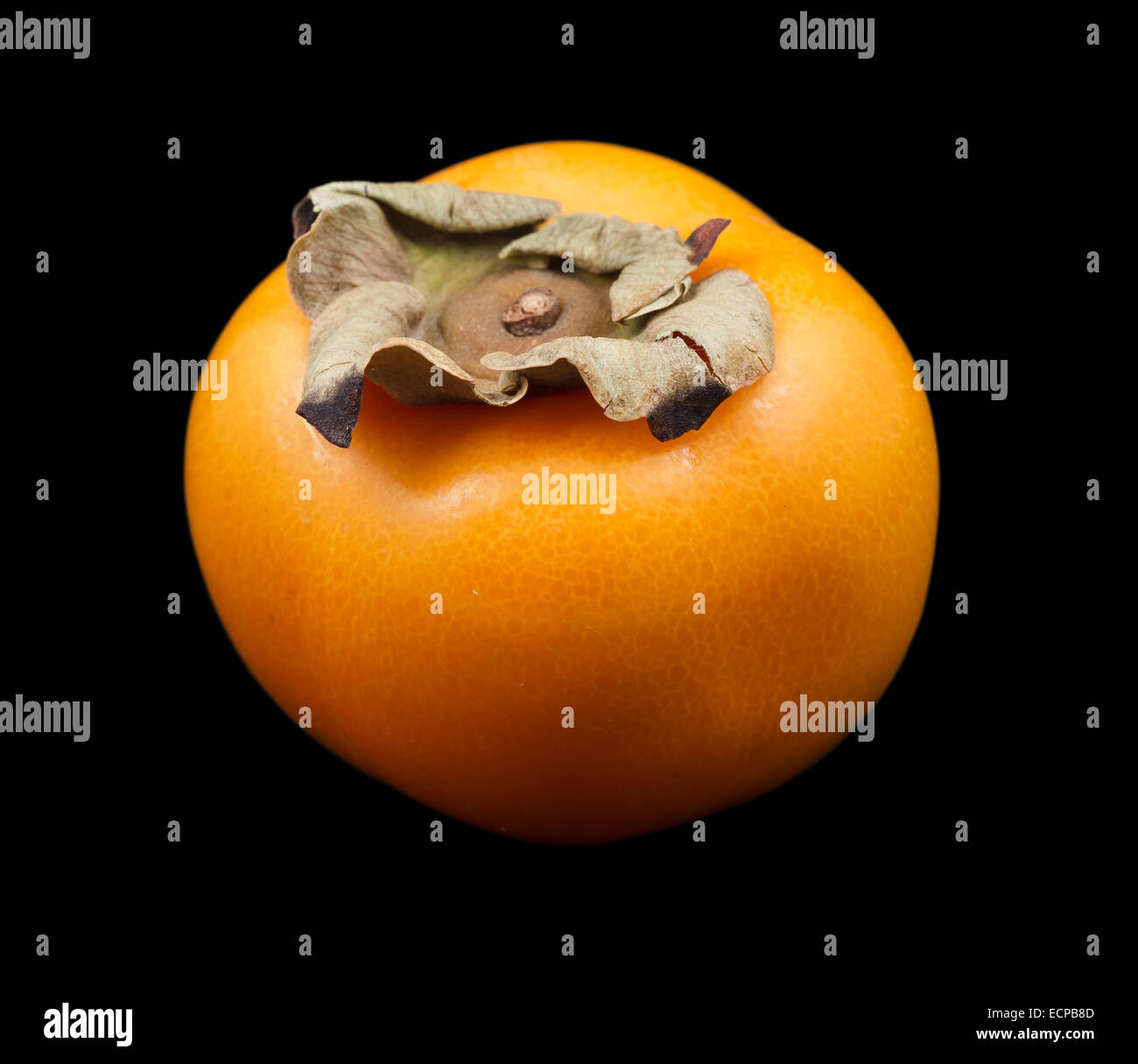 One persimmon fruit - Stock Image