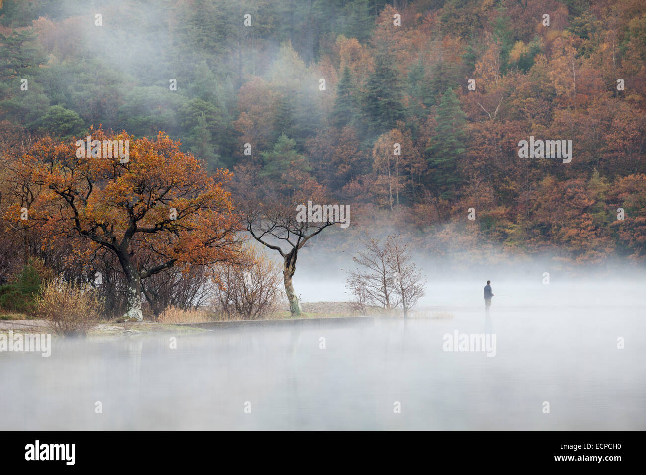 A fisherman in the mist on Crummock Water in the Lake District National Park - Stock Image