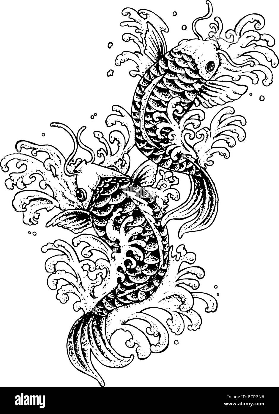 Traditional Koi Fish Tattoo Black And White Illustration Stock