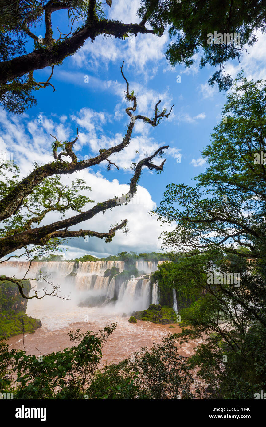 Iguazu Falls, Iguazú Falls, Iguassu Falls or Iguaçu Falls are waterfalls of the Iguazu River on the border - Stock Image