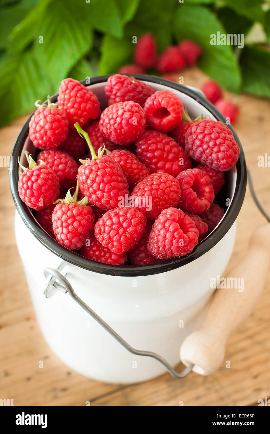 Closeup of fresh raspberries fruits in churn Stock Photo