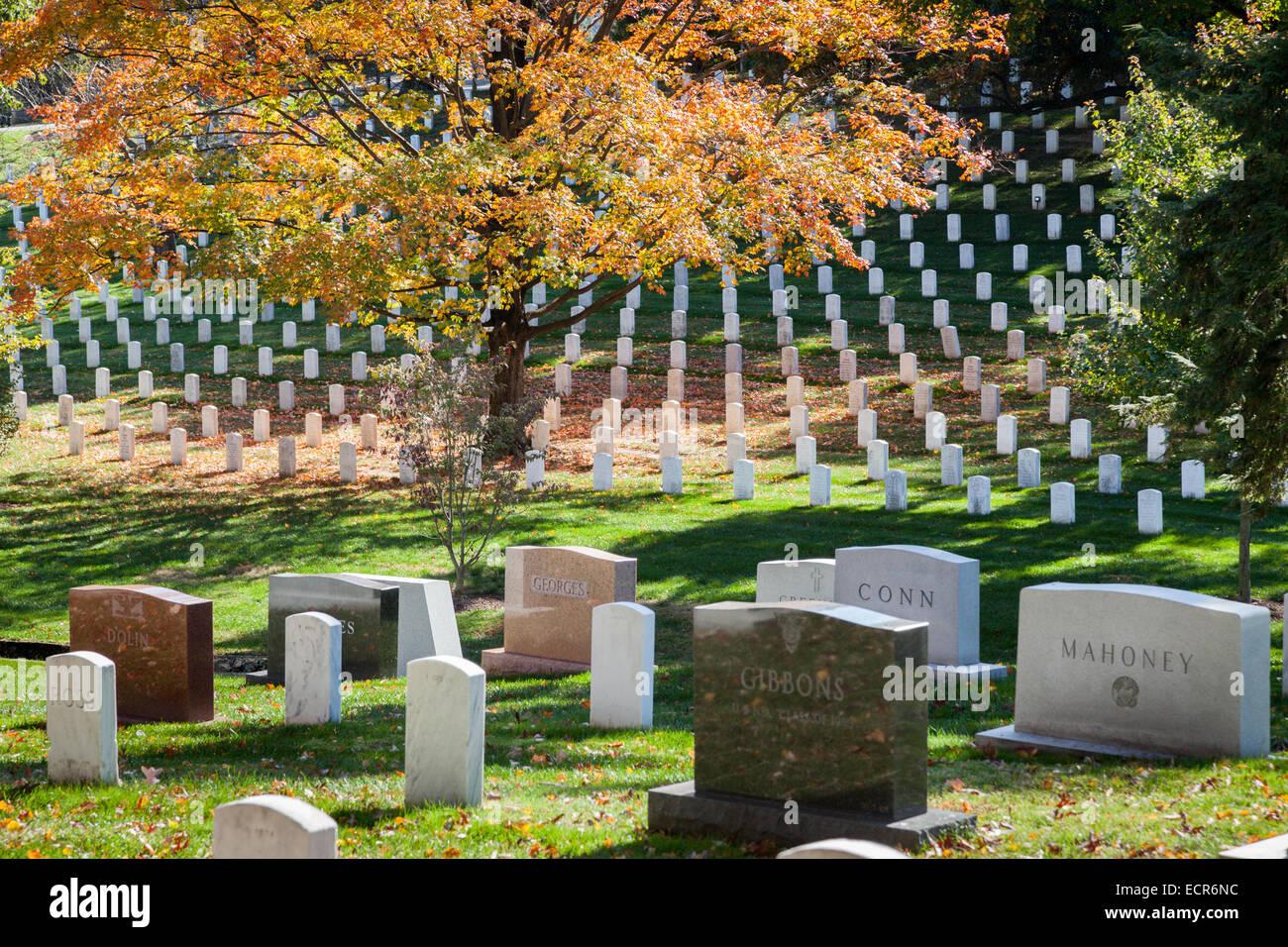 Arlington National Cemetery in autumn foliage, Virginia - Stock Image