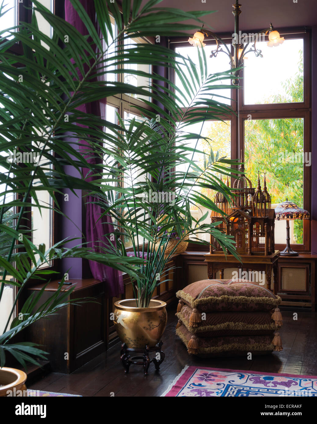 Palms potted in gold puts in purple drawing room with floral rug and piled floor cushions - Stock Image