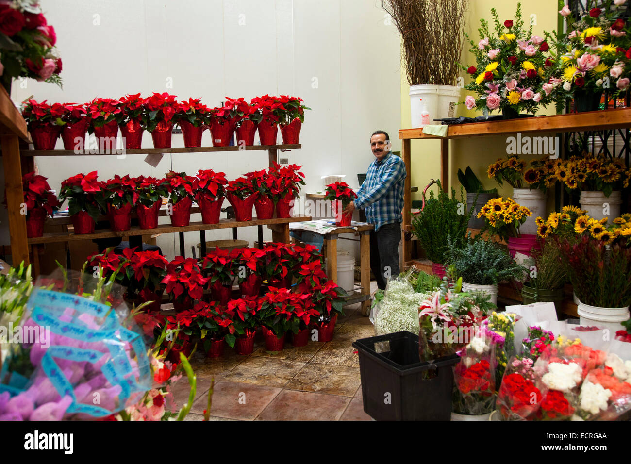 The Flower Mart Downtown Los Angeles California United States Of