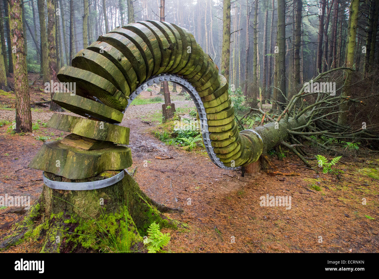 The Pendle Sculpture trail in Aitken Wood, on Pendle, near Clitheroe, Lancashire, UK. - Stock Image