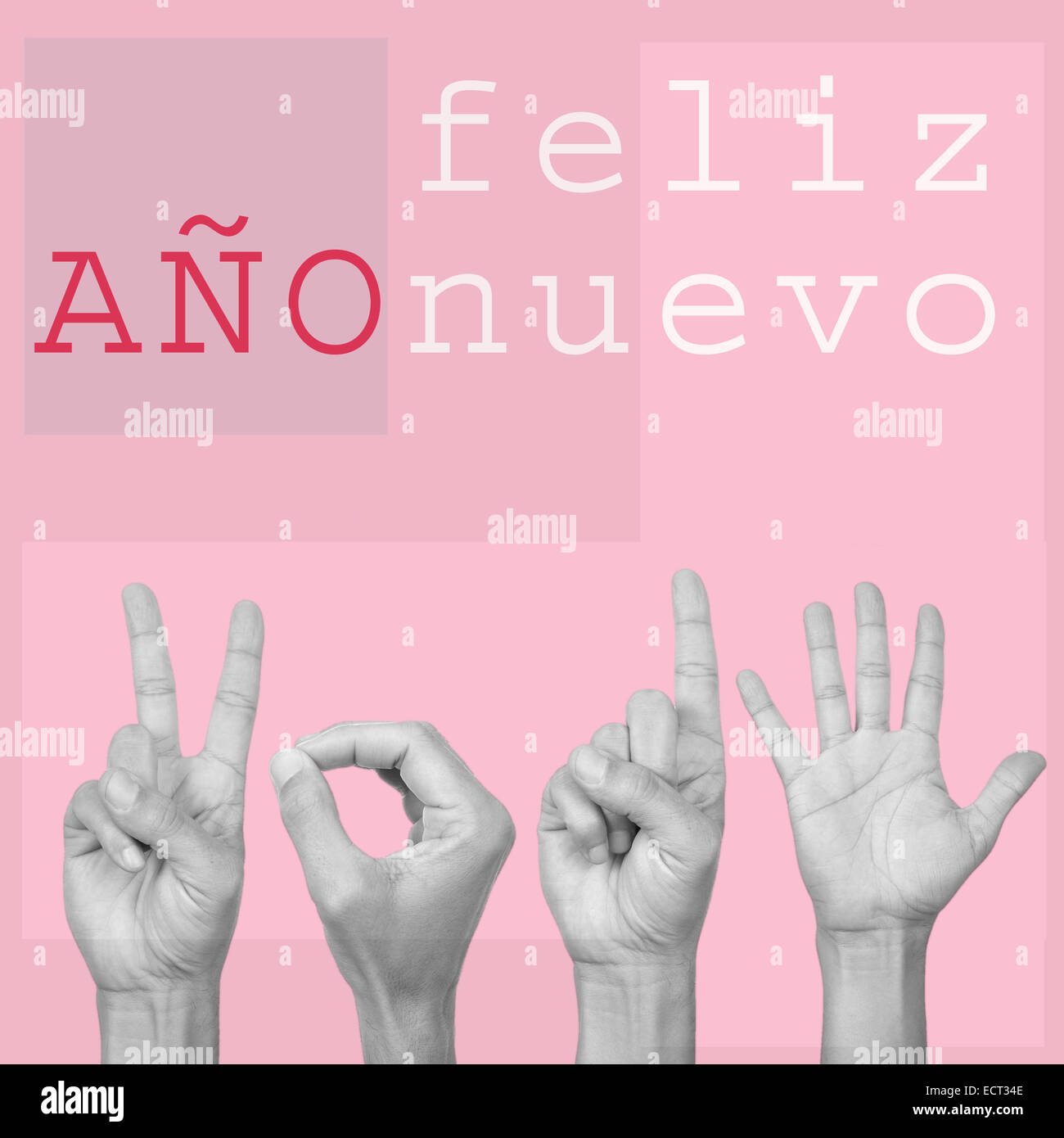 the text feliz ano nuevo, happy new year in spanish, and man hands forming the number 2015, on a pink background, - Stock Image
