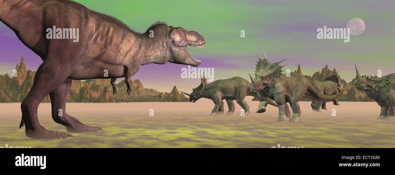 Tyrannosaurus attacking styracosaurus dinosaurs in desert landscape by green full moon light - Stock Image
