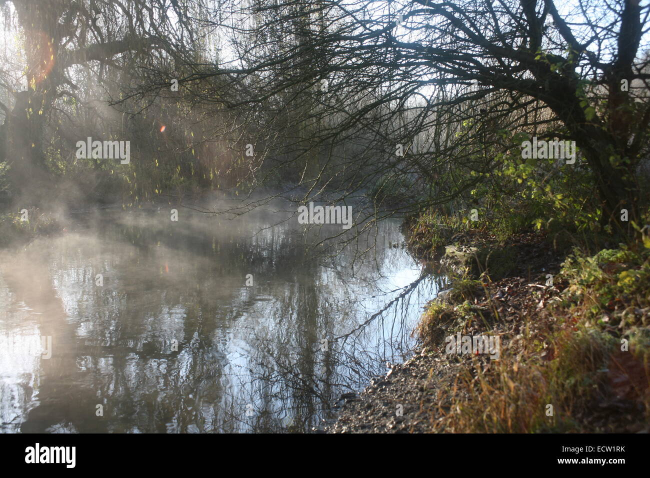 Autumn mist over the river colne - Stock Image