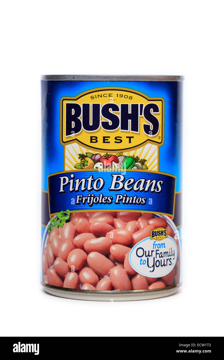 Bush's Best Canned Pinto Beans - Stock Image