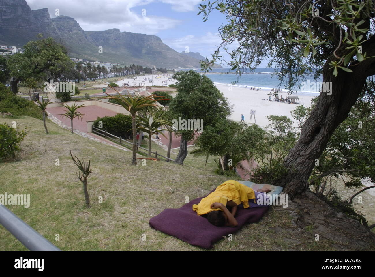 A homeless person sleeping under a tree near Camps Bay beach in Cape Town, South Africa. Picture by: Adam Alexander/Alamy - Stock Image