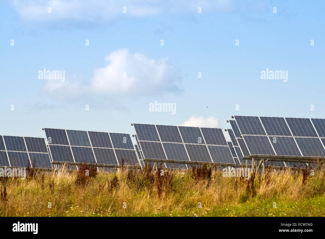 Solar cells of a photovoltaic system to generate energy through solar energy - Stock Image