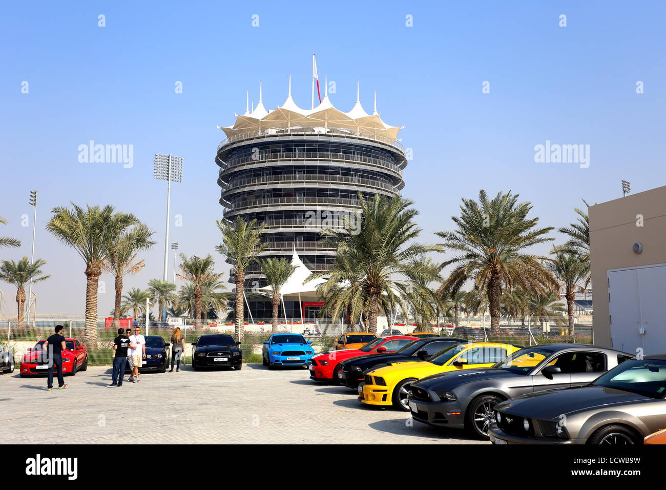 Parade of Ford Mustangs in front of the VIP tower at the Formula 1 circuit, Sakhir, Kingdom of Bahrain - Stock Image