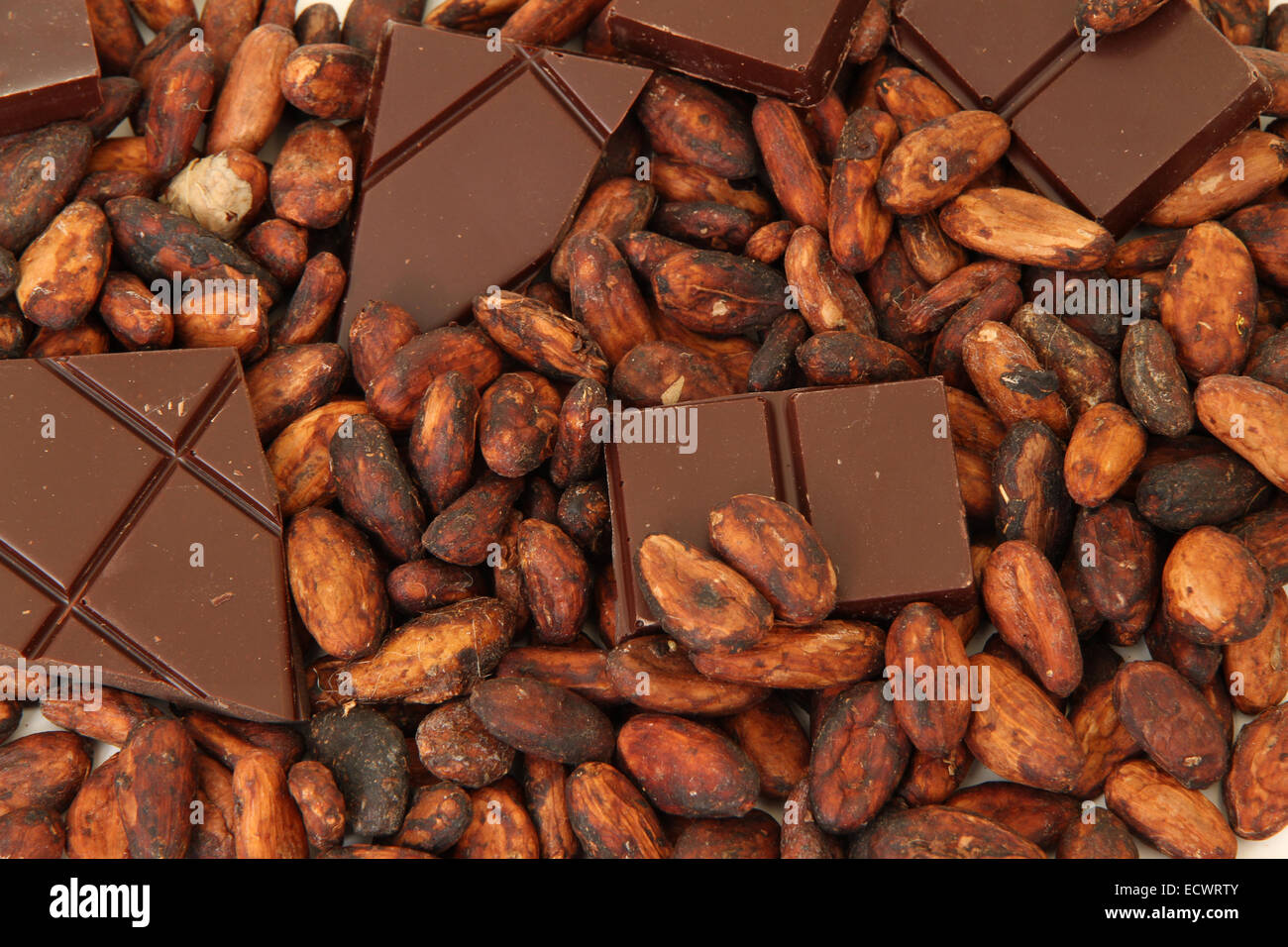 fine origin chocolate with cocoa beans on white surface - Stock Image