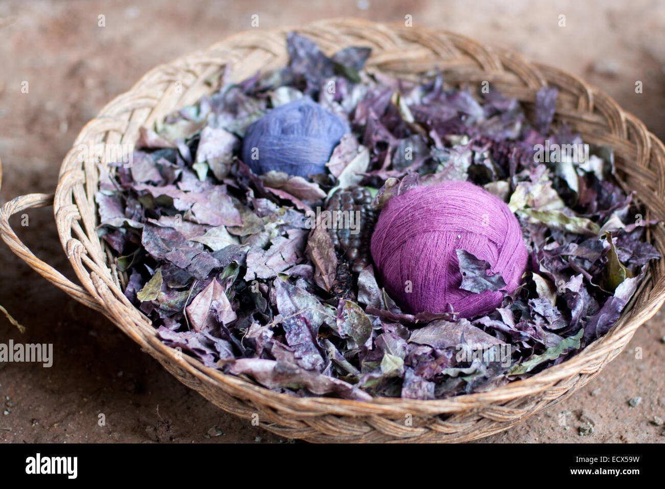 the picture of the purple wool clews, filled whole frame - Stock Image