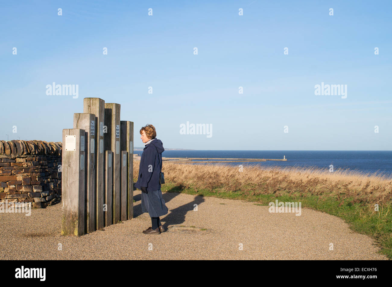 Woman reading notice at Nose's Point Seaham, County Durham, England, UK - Stock Image