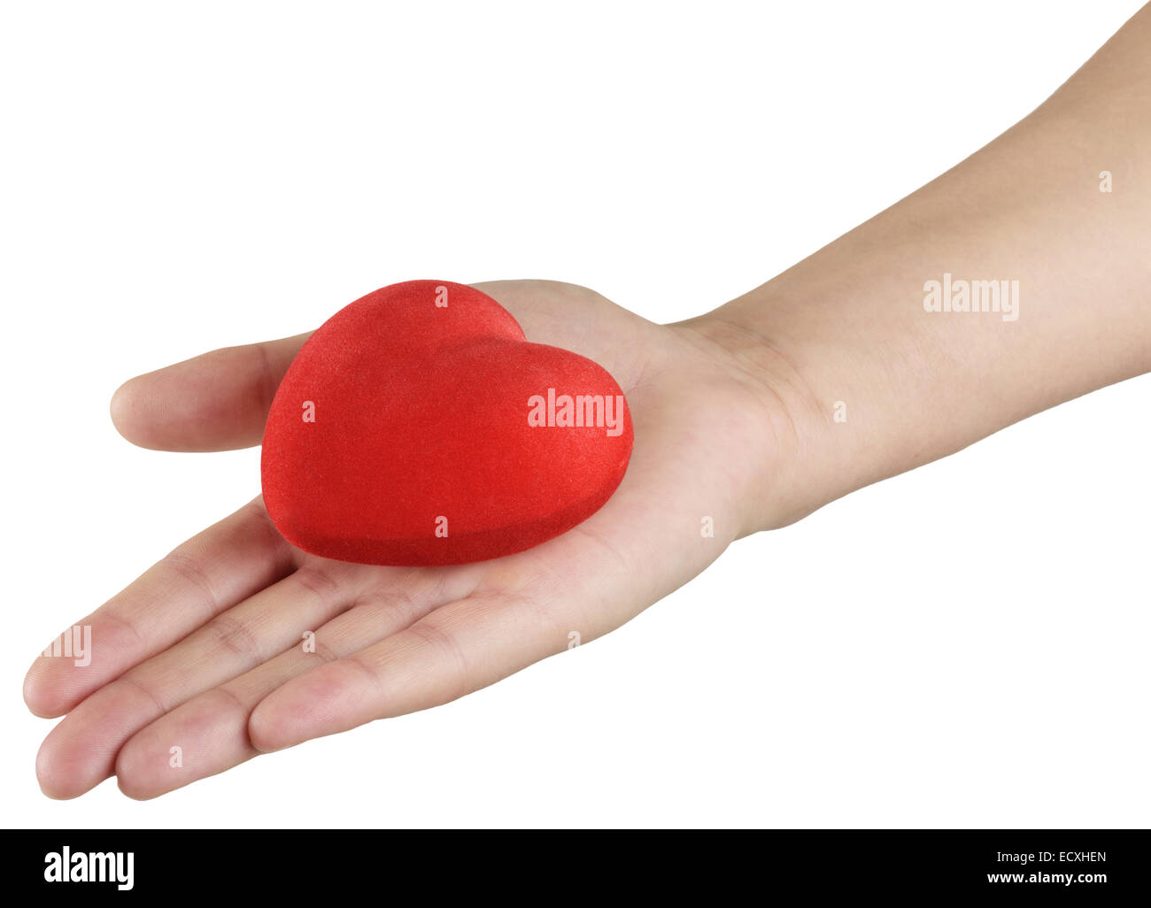 red heart in hand, a symbol of love and health Stock Photo