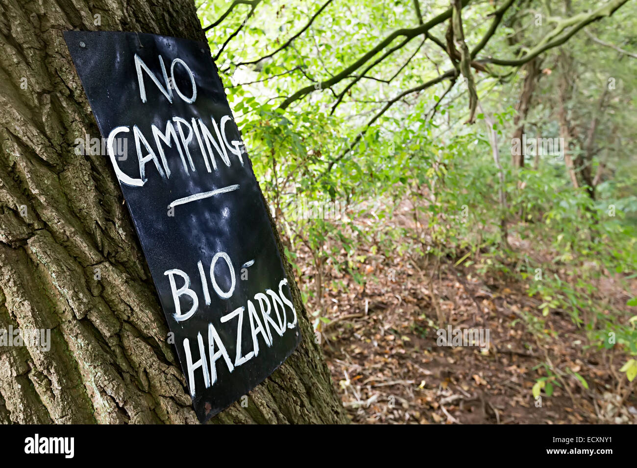 No camping bio hazards warning sign on tree in woods, Usk Valley, Wales, UK - Stock Image
