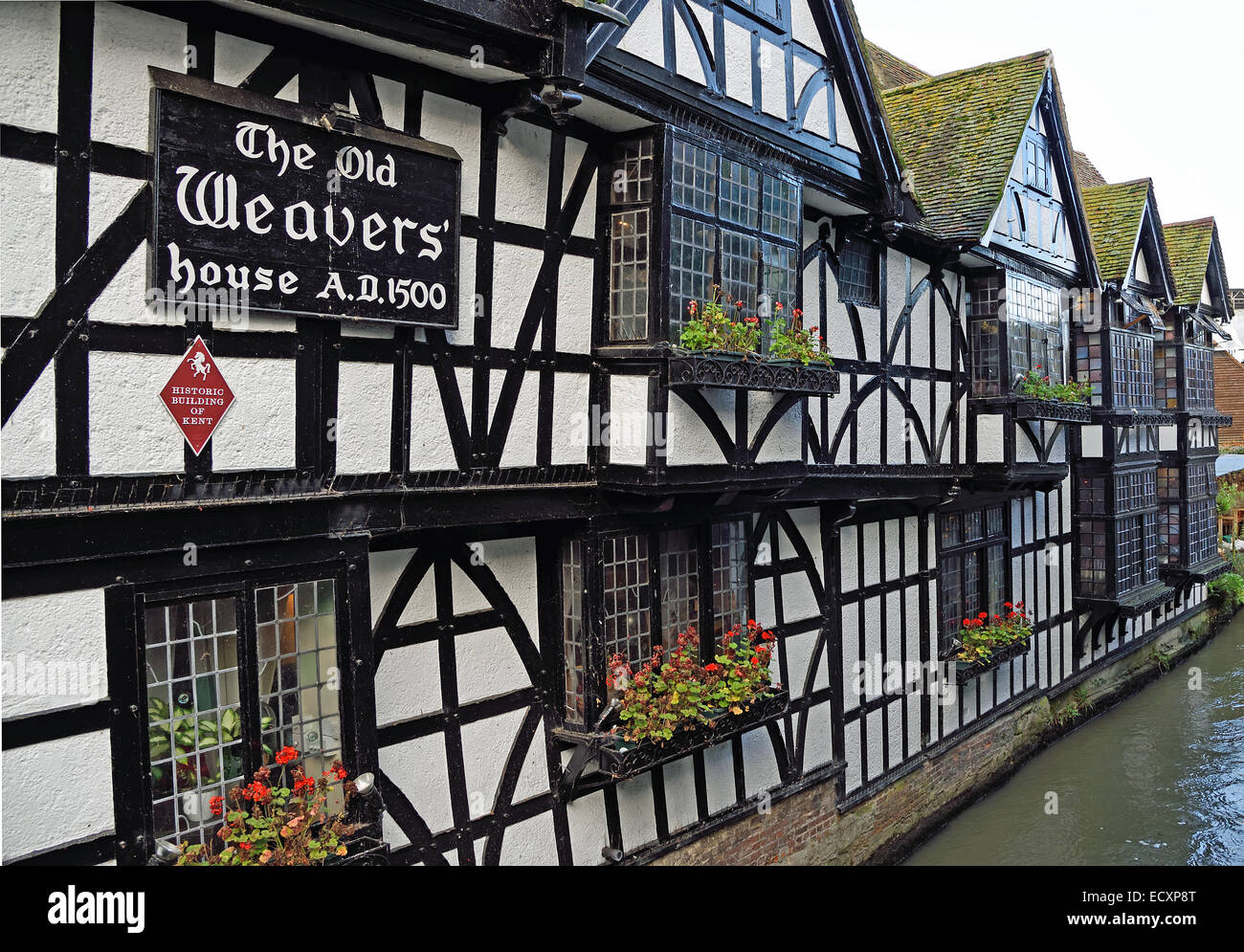 the old weavers