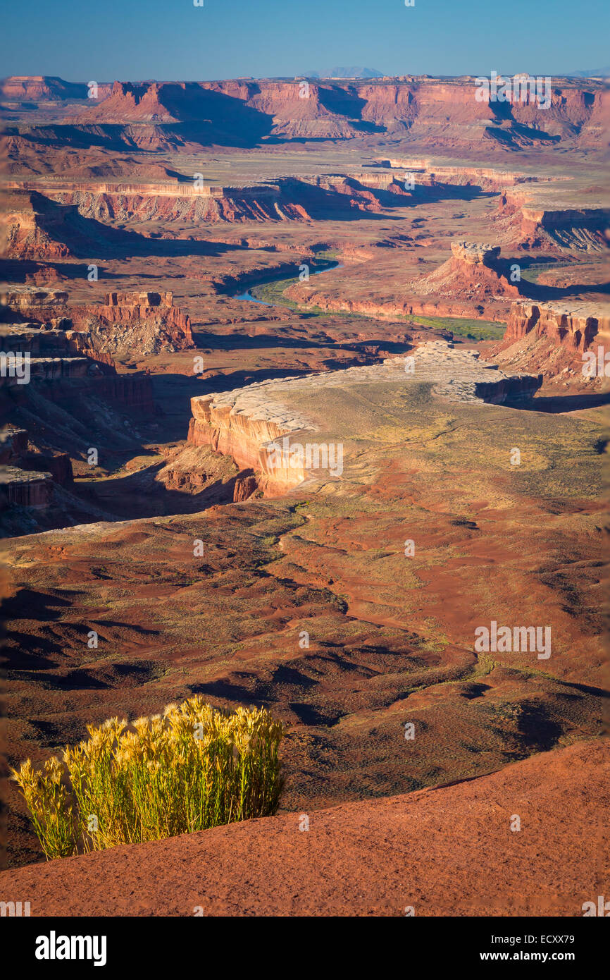 Grandview Point in Canyonlands National Park, Utah - Stock Image