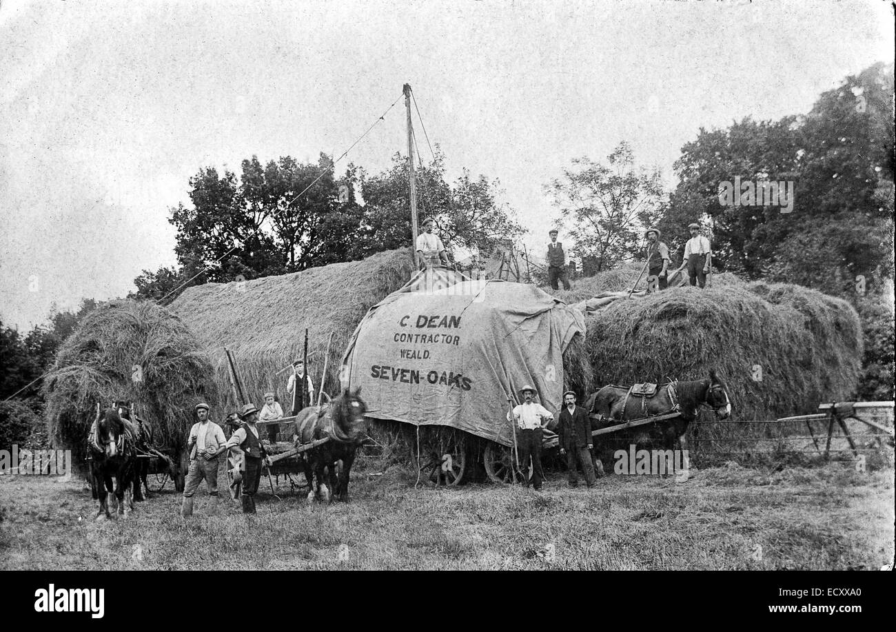England. Farmer and contractors gathered around two house and carts while gathering in the hay, autumn, 1900-1920's - Stock Image