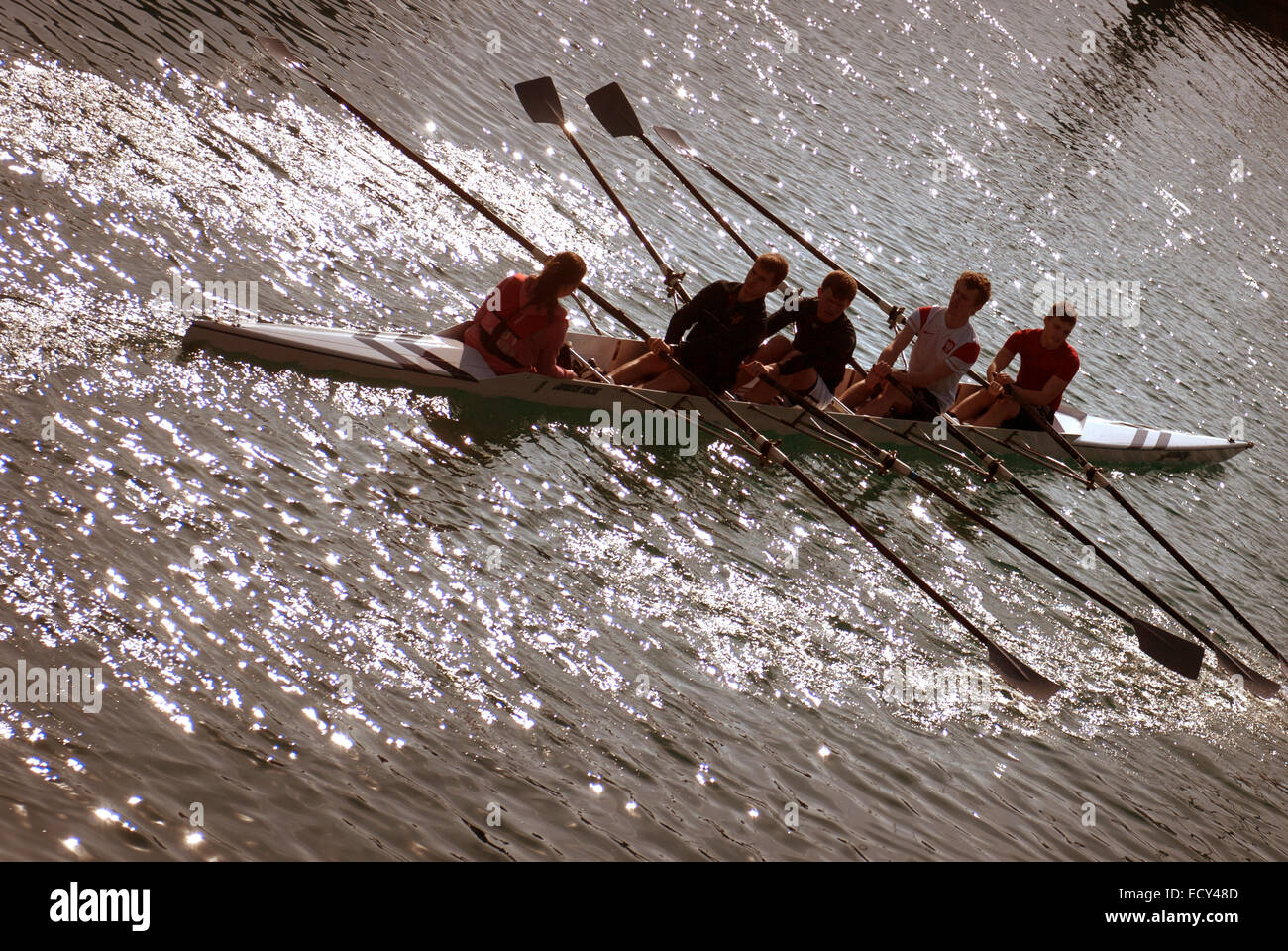 Coxed four / rowing boat - Stock Image