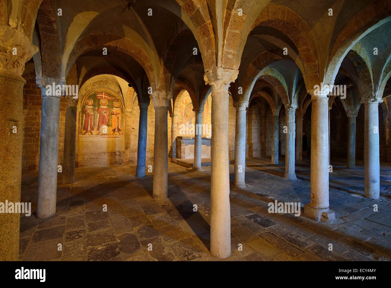Hall crypt with ancient reused columns in the Basilica of San Pietro, Tuscania, Viterbo, Lazio, Italy - Stock Image