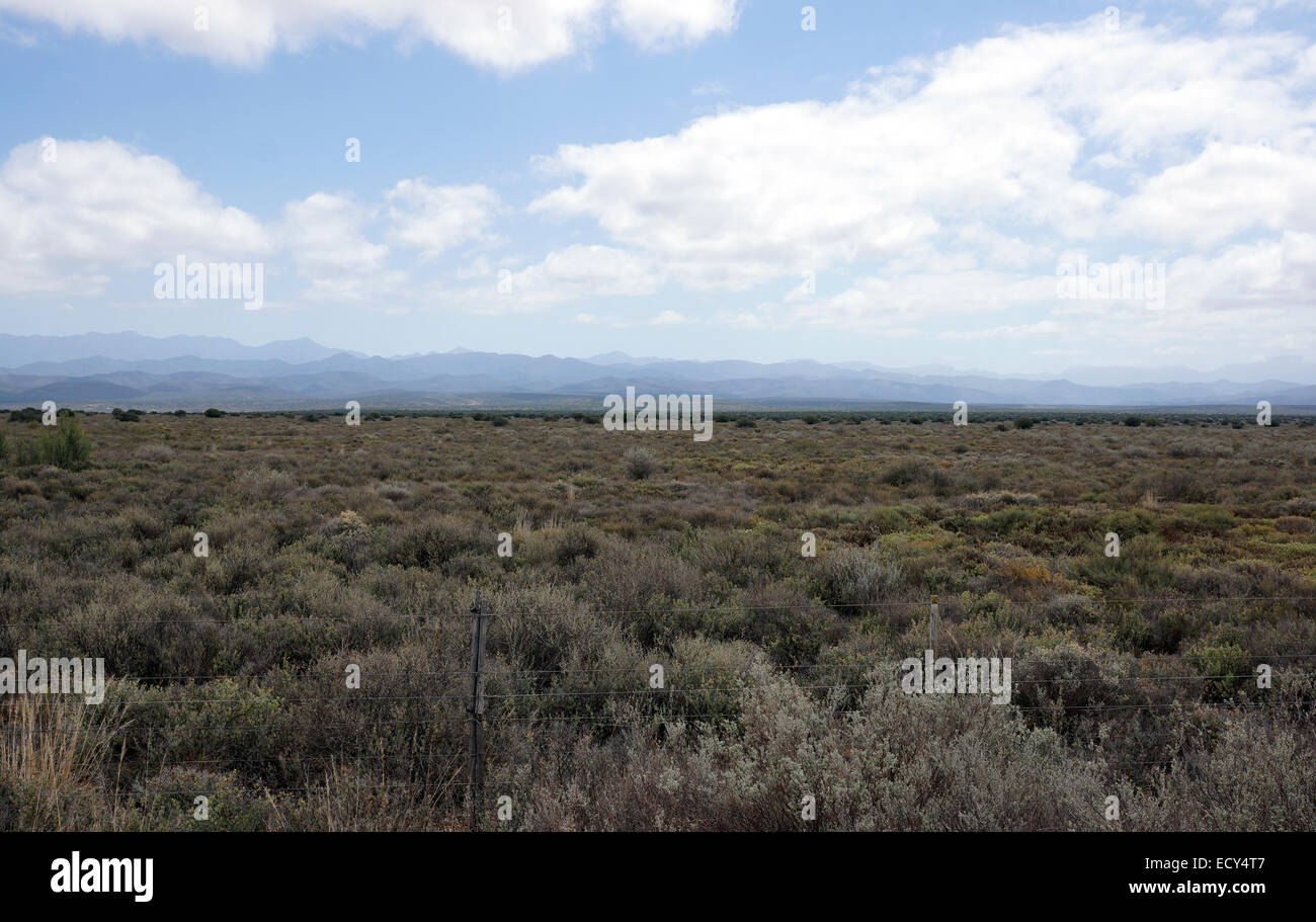 The landscape of the Little (Klein) Karoo, Southern Cape, South Africa. - Stock Image