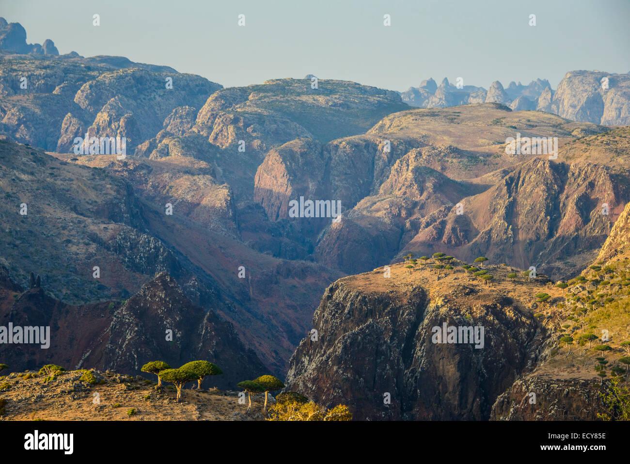 Huge canyon on the Dixsam plateau, Socotra, Yemen - Stock Image
