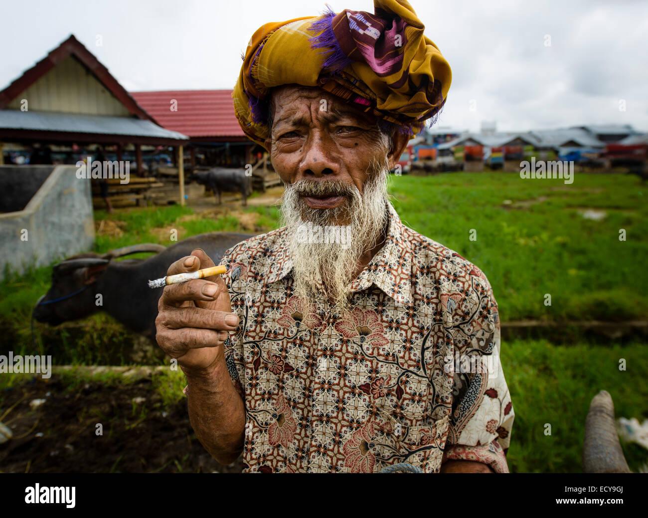 Toraja man at the livestock market, Sulawesi, Indonesia - Stock Image