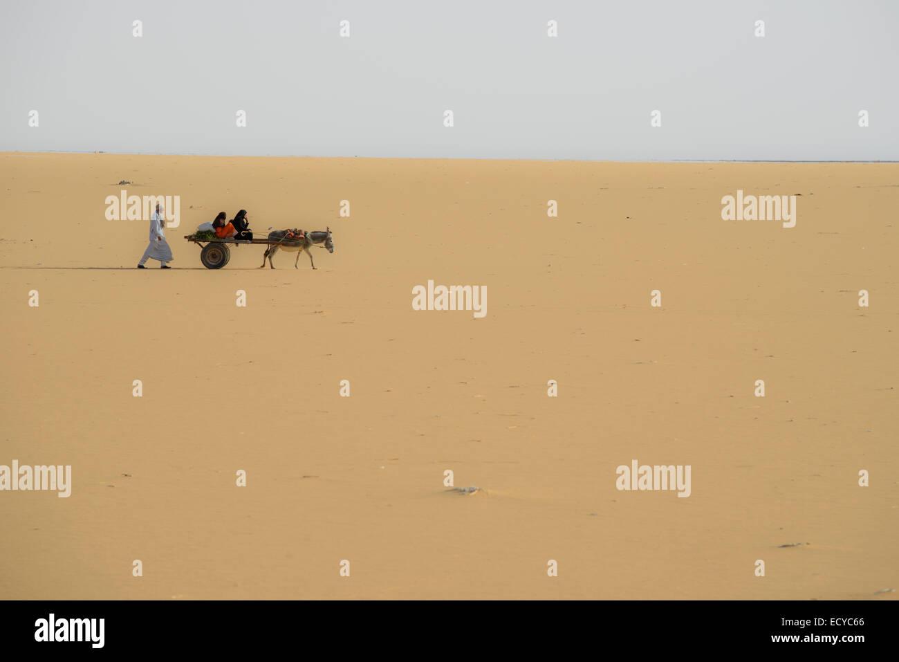 Family riding on donkey across the Sahara desert, Egypt - Stock Image