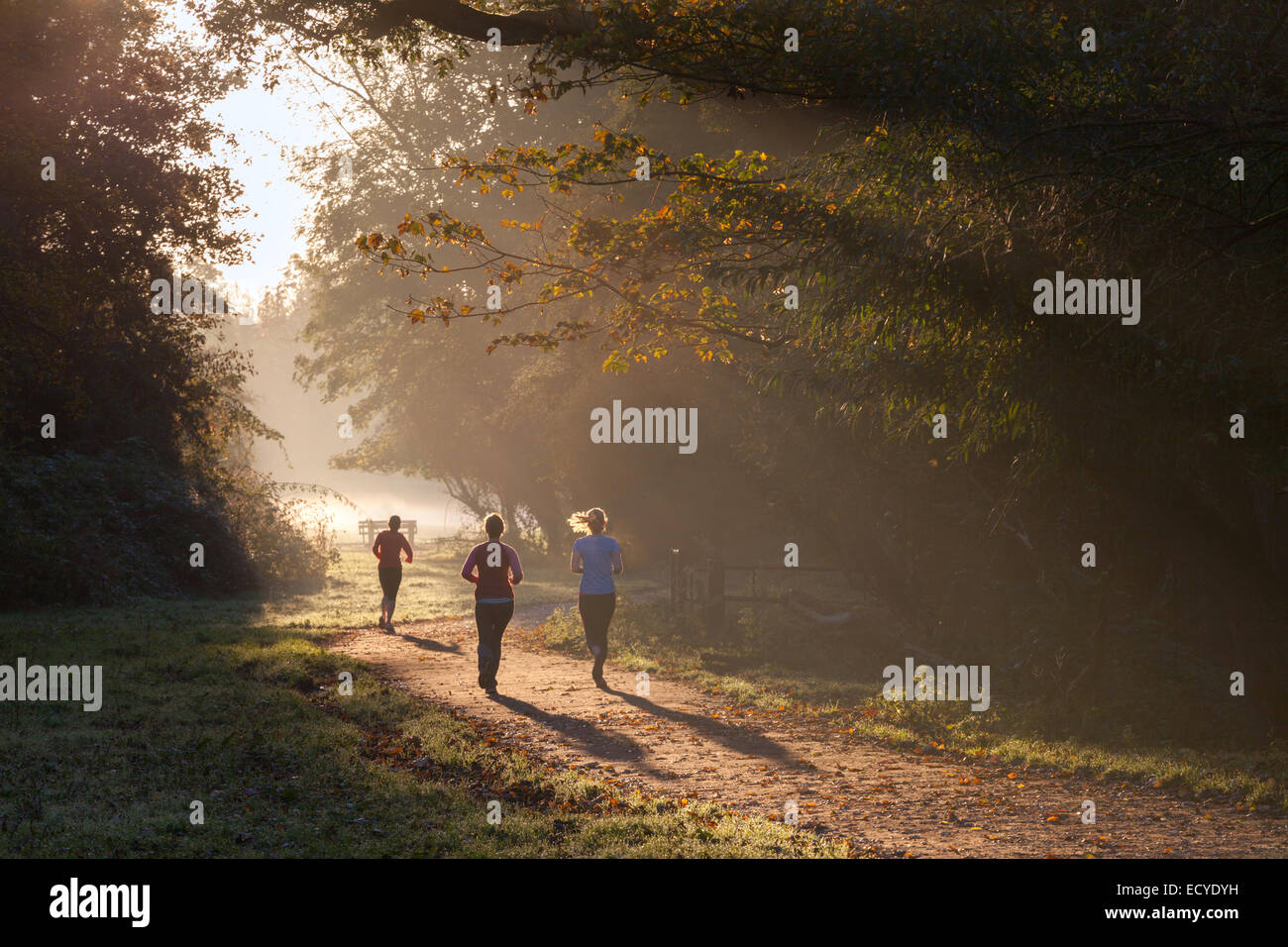 Joggers on the path Vicar's Brook, Cambridge, UK - Stock Image