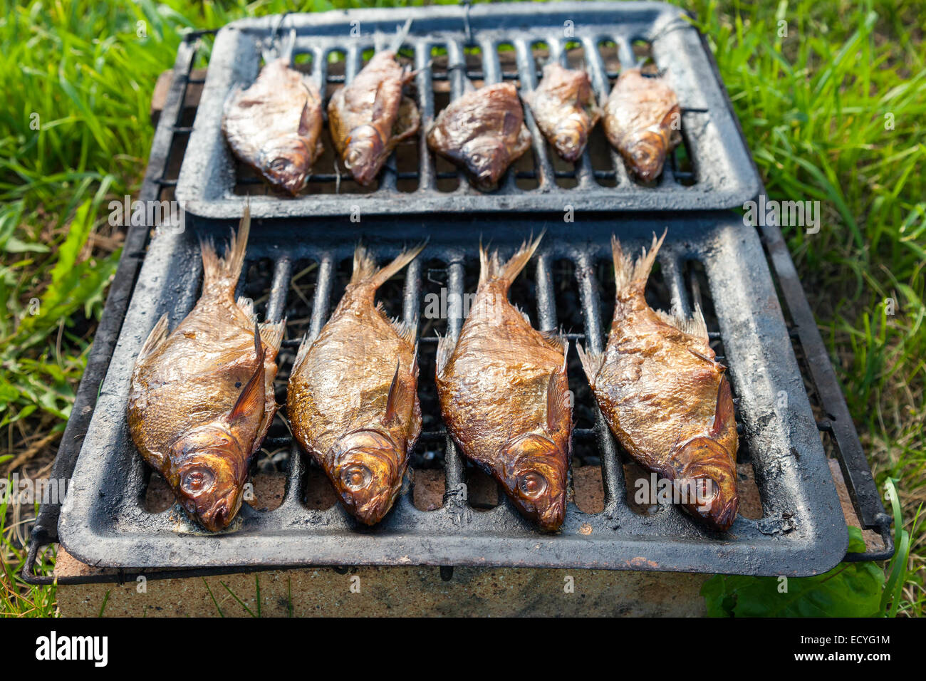 Smoked fish home cooking on the outdoors - Stock Image