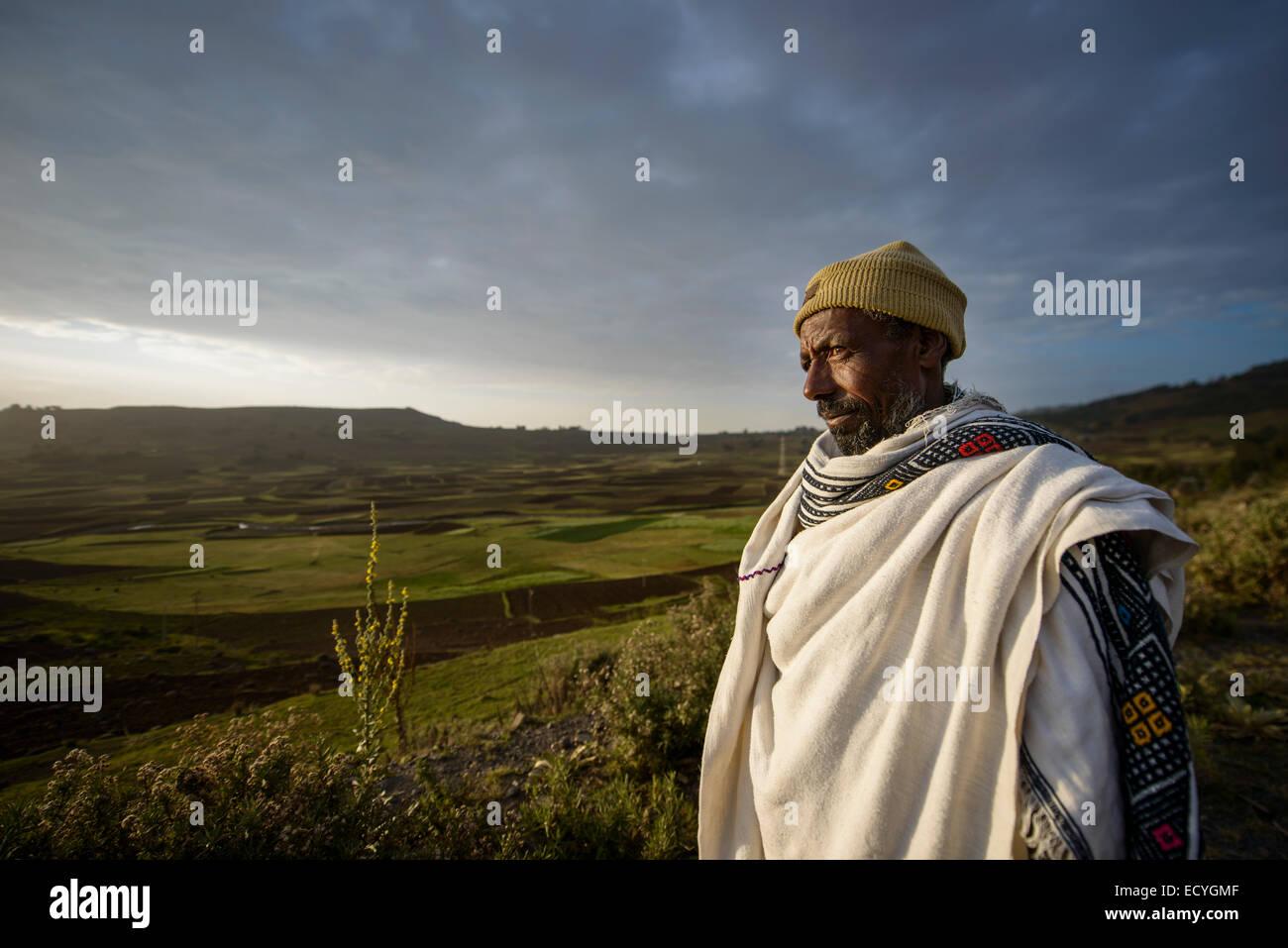 Ethiopian farmer watching his cattle, Debre Birhan, Ethiopia - Stock Image