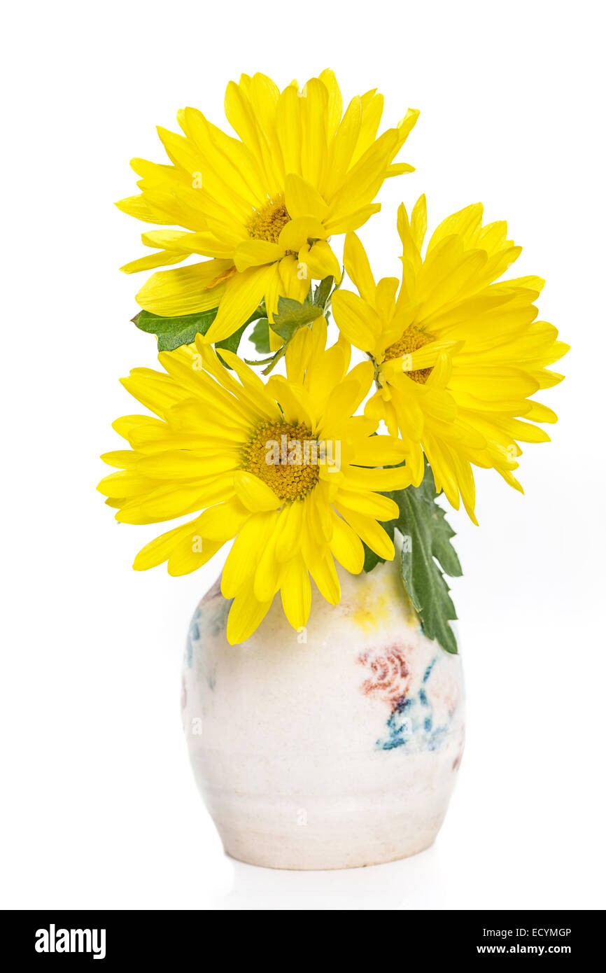Yellow mums as cut flowers in a small  pottery vase. - Stock Image