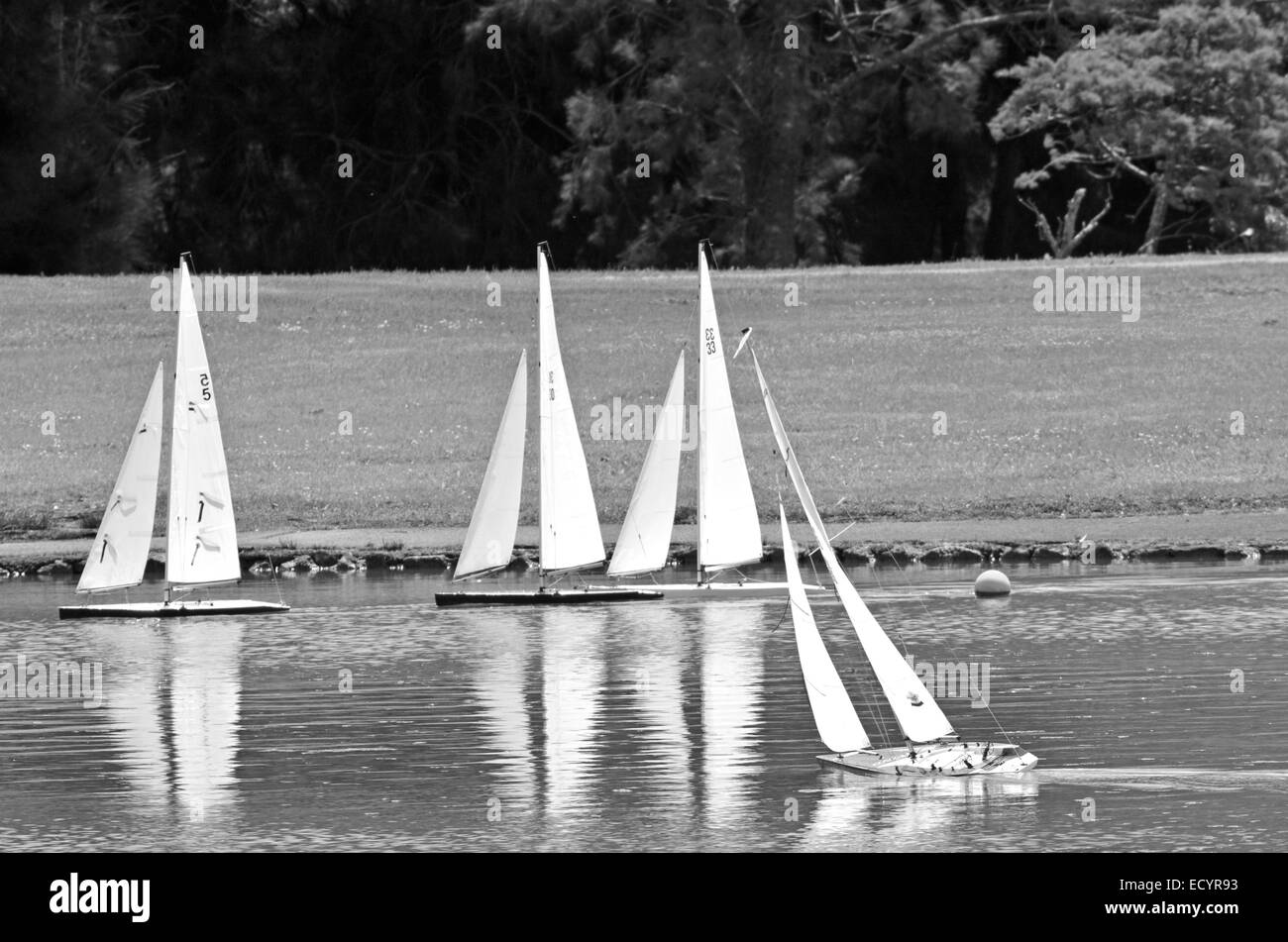 Remote controlled sailing wooden yachts sail in a pond - Stock Image