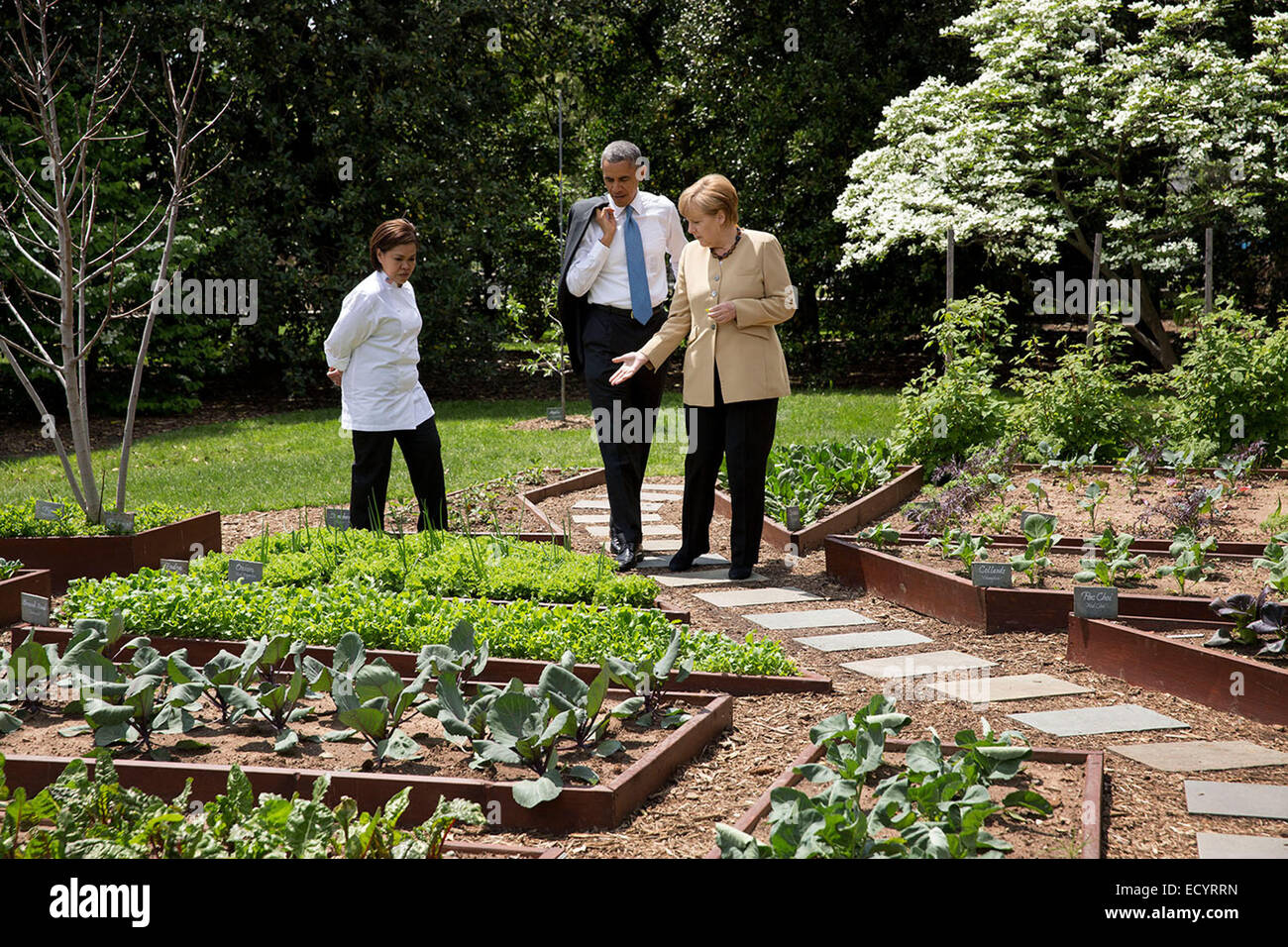 President Barack Obama and Chancellor Angela Merkel of Germany tour the White House Kitchen Garden on the South - Stock Image