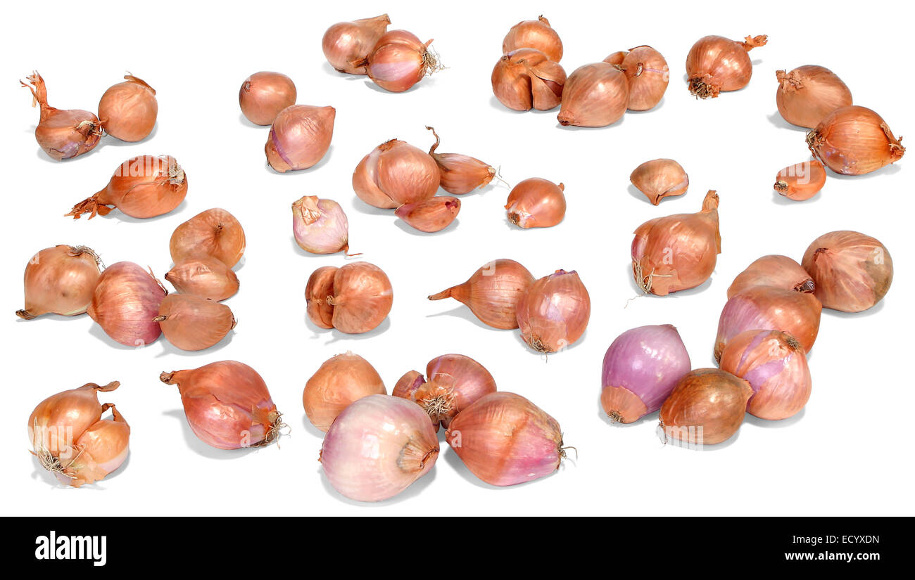 group of shallots - Stock Image