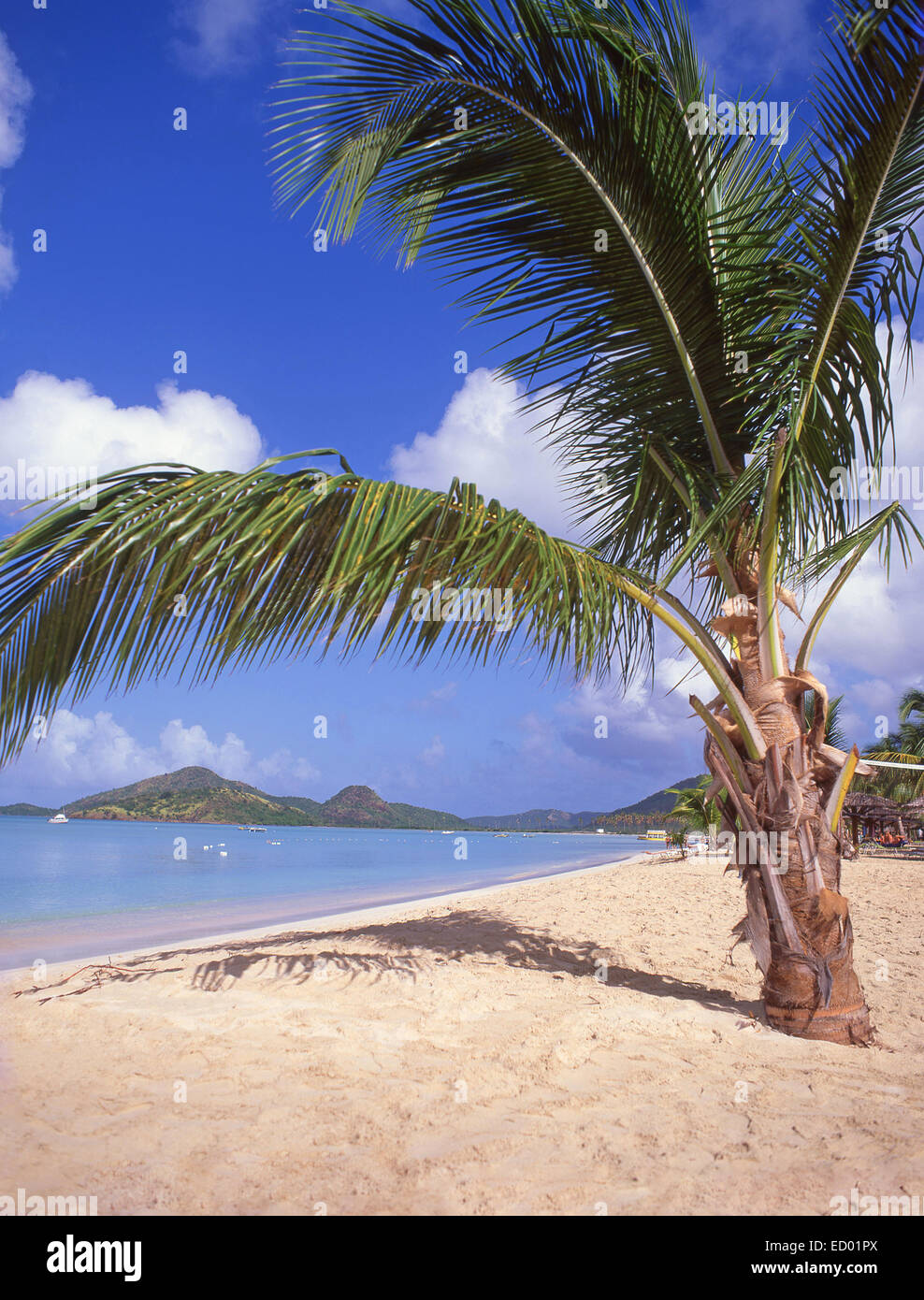 Beach view, Jolly Beach Resort & Spa, Saint Mary's Parish, Antigua, Antigua and Barbuda, Lesser Antilles, Caribbean Stock Photo
