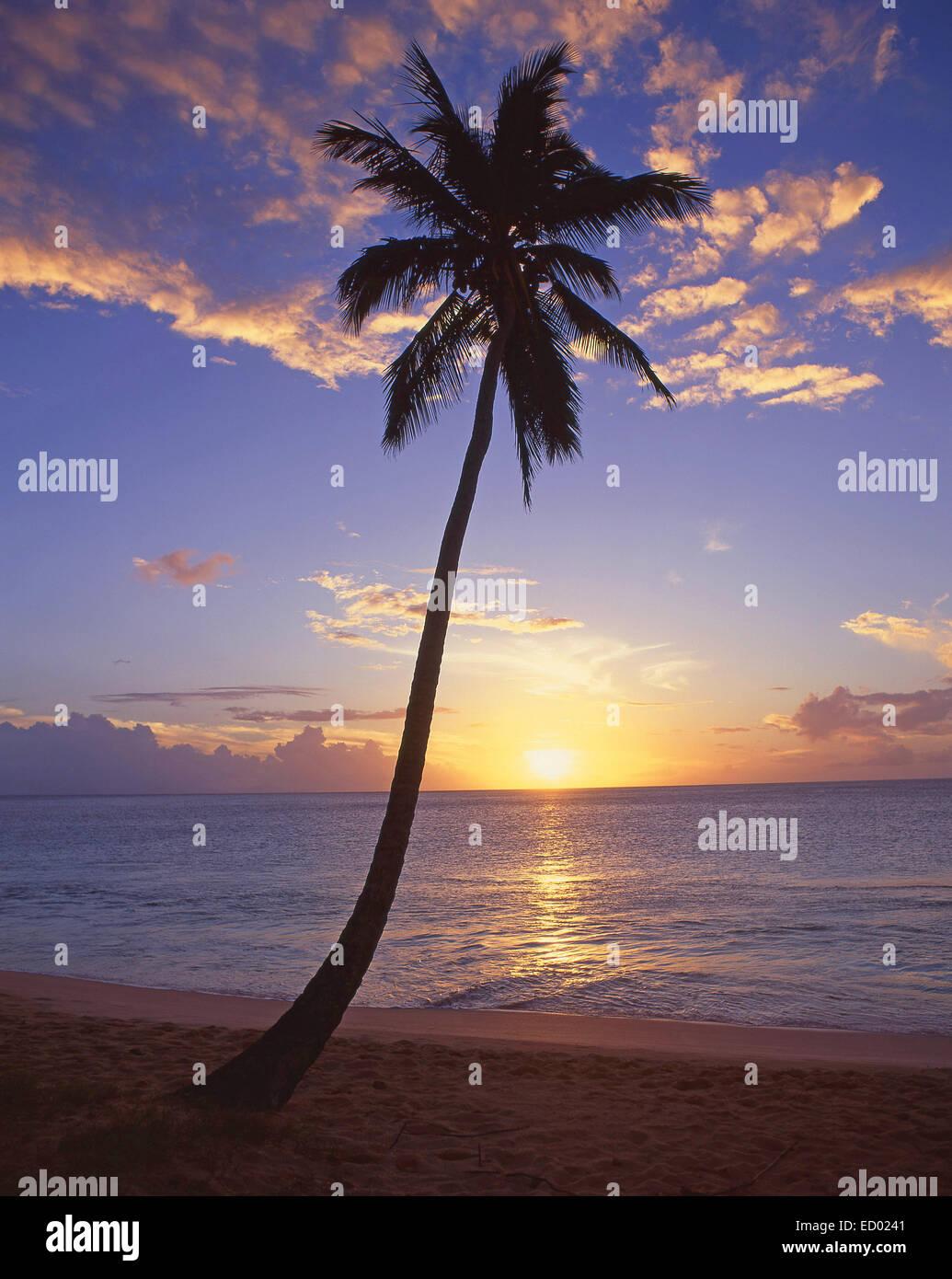Tropical sunset, Darkwood Beach, Saint Mary's Parish, Antigua, Antigua and Barbuda, Lesser Antilles, Caribbean Stock Photo