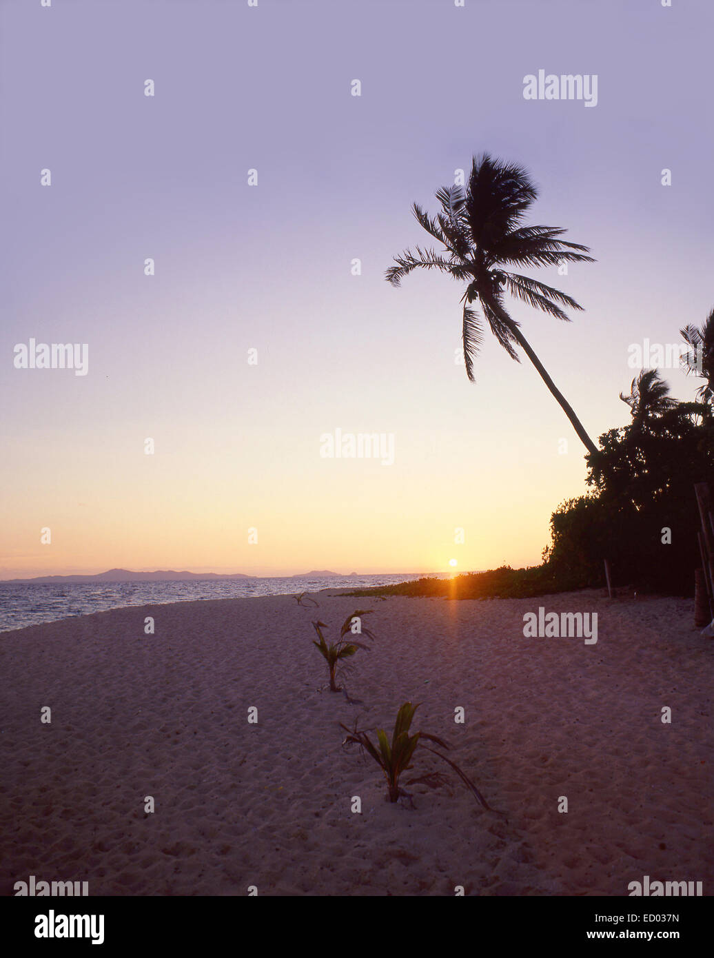 Tropical sunset, Beachcomber Island Resort, Beachcomber Island, Mamanuca Islands, Viti Levu, Republic of Fiji - Stock Image
