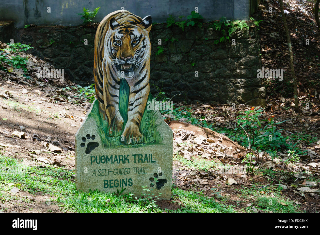 Kerala, India - Periyar Tiger Reserve nature parl at Thekkady. - Stock Image