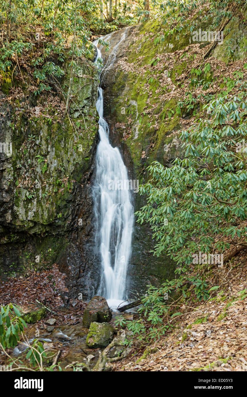 Backbone Rock Falls waterfall in Eastern Tennessee - Stock Image