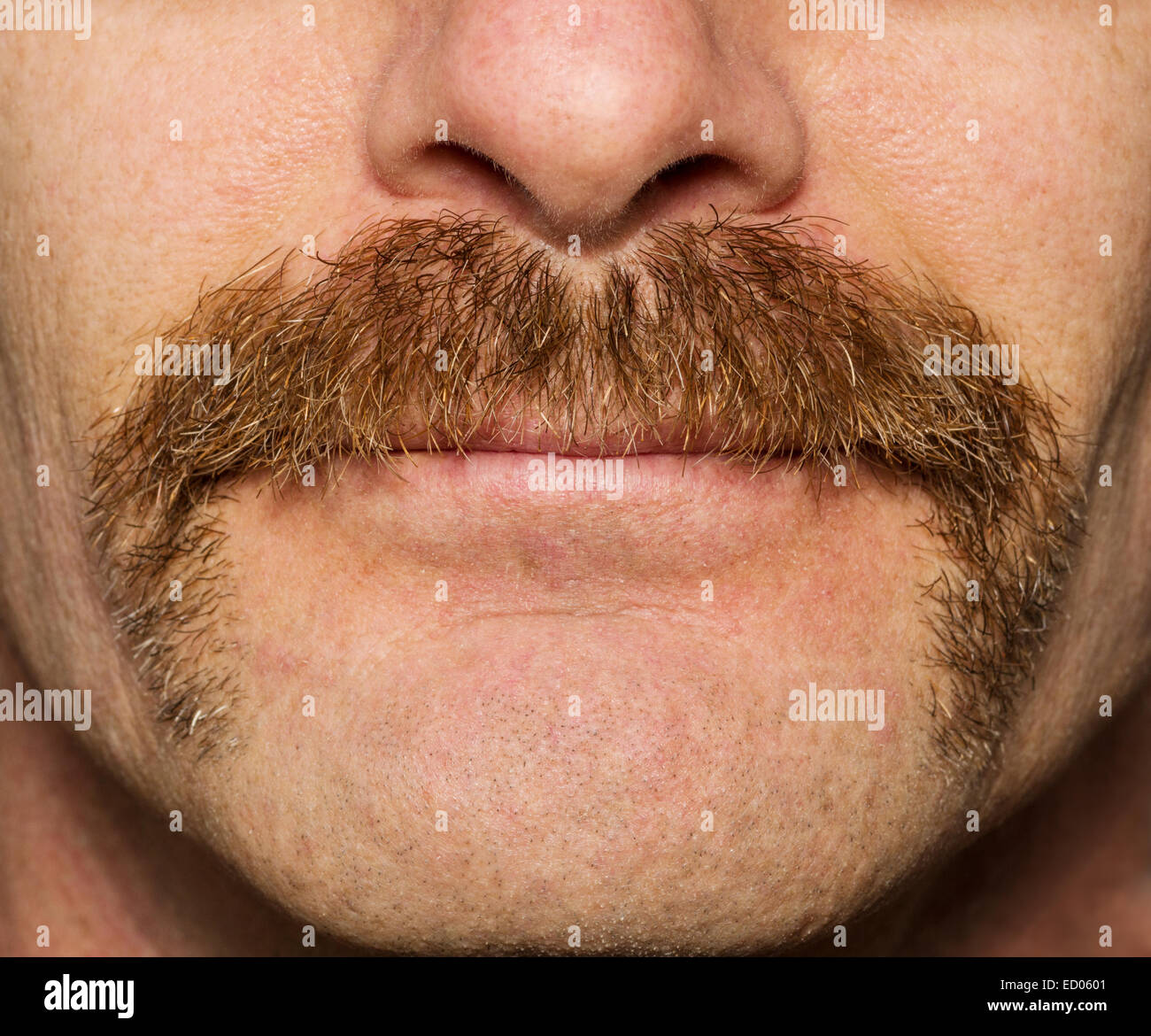 close up of mans face with one month old movember mustache - Stock Image