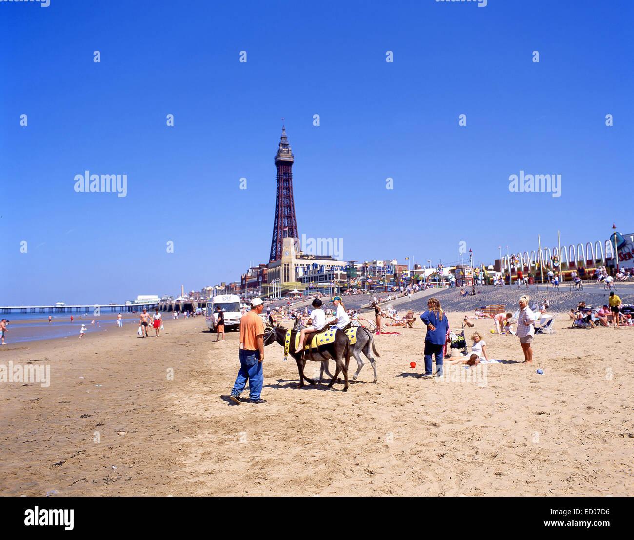 Donkey rides on Blackpool Sands, Blackpool, Lancashire, England, United Kingdom - Stock Image