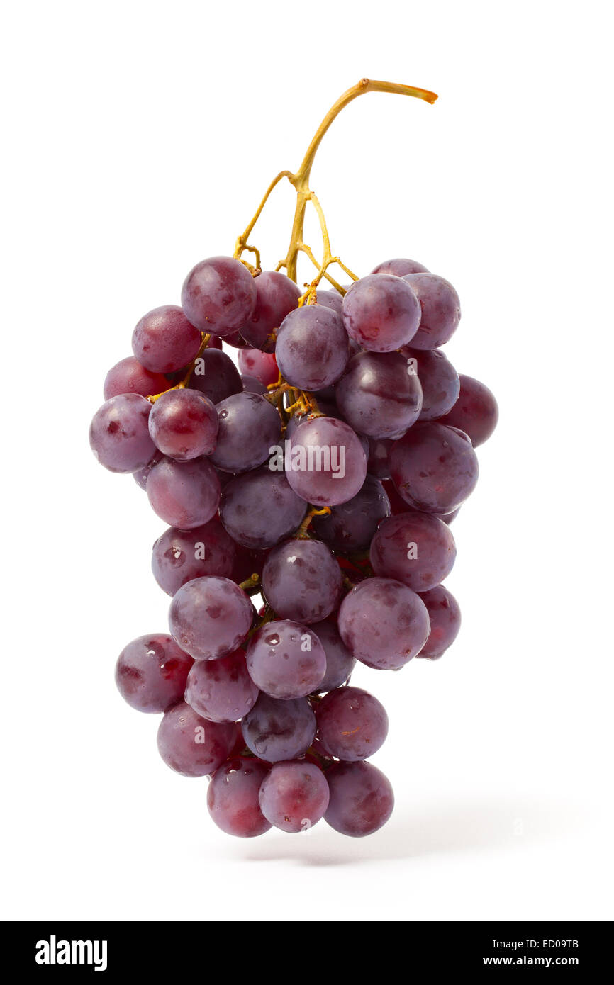 Bunch of red grape isolated on white. - Stock Image