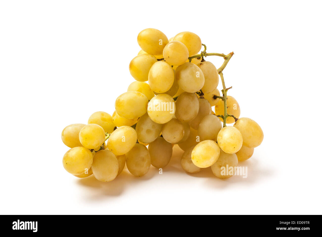 Bunch of mature white grape isolated on white. - Stock Image