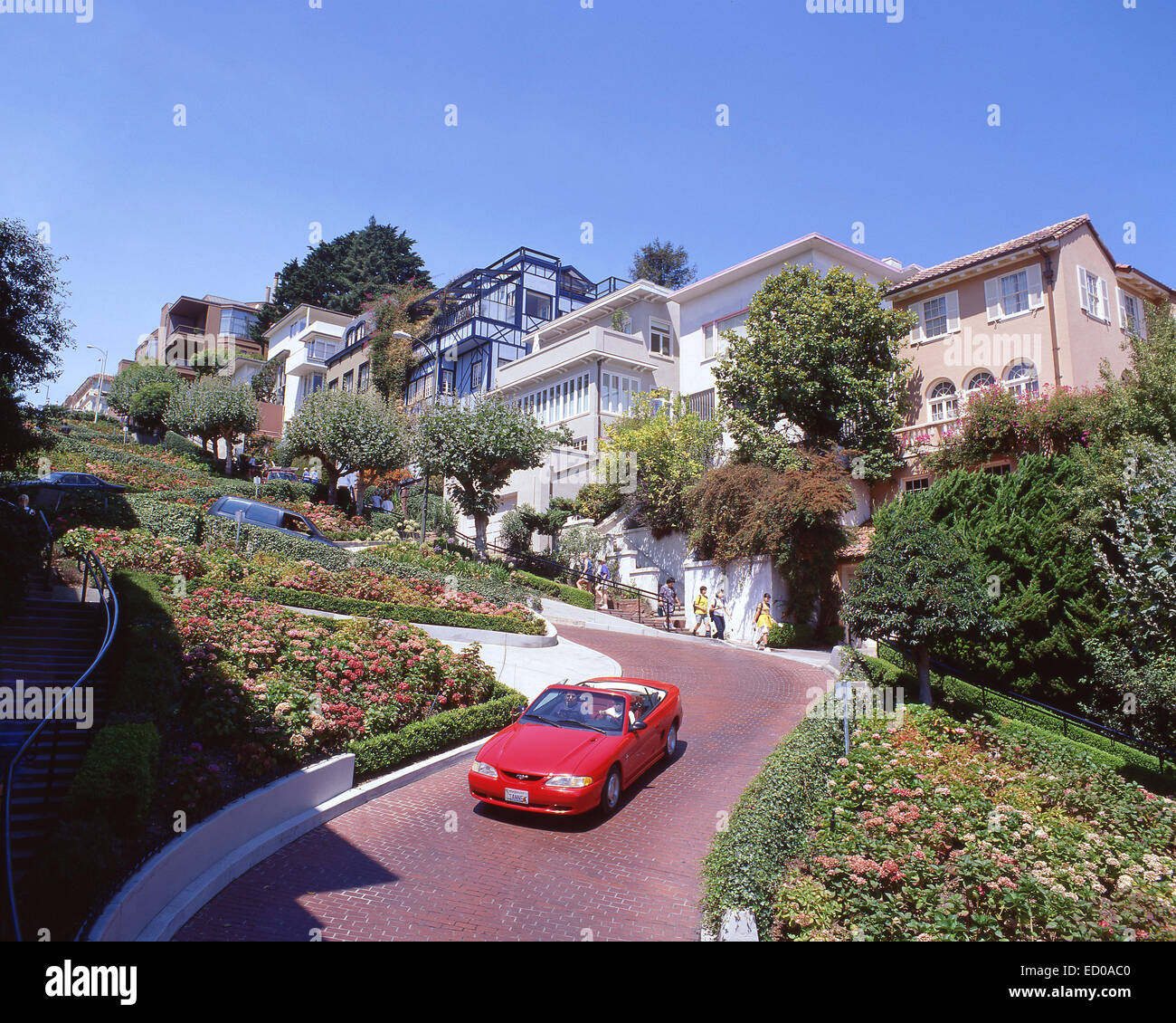 Lombard Street (crookedest street in the world), Russian Hill, San Francisco, California, United States of America - Stock Image