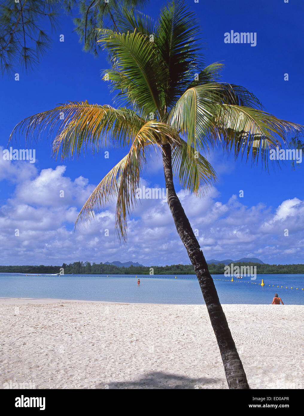 Tropical beach, Île aux Cerfs Island, Flacq District, Republic of Mauritius - Stock Image